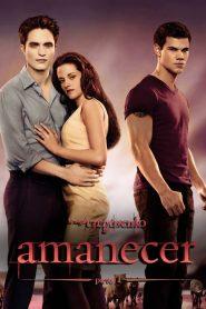 La saga Crepúsculo: Amanecer – Parte 1