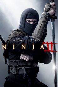 Ninja 2: Shadow Of A Tear